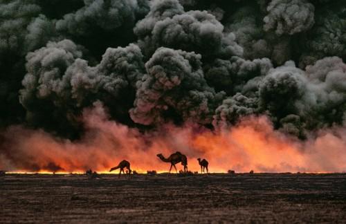 Steve McCurry, Koweit