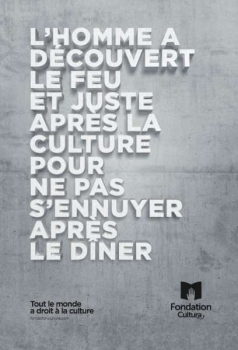 fondation cultura st johns (3)