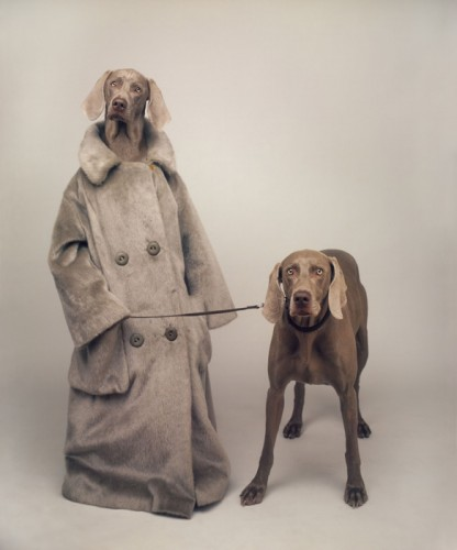 williamwegman_Walker